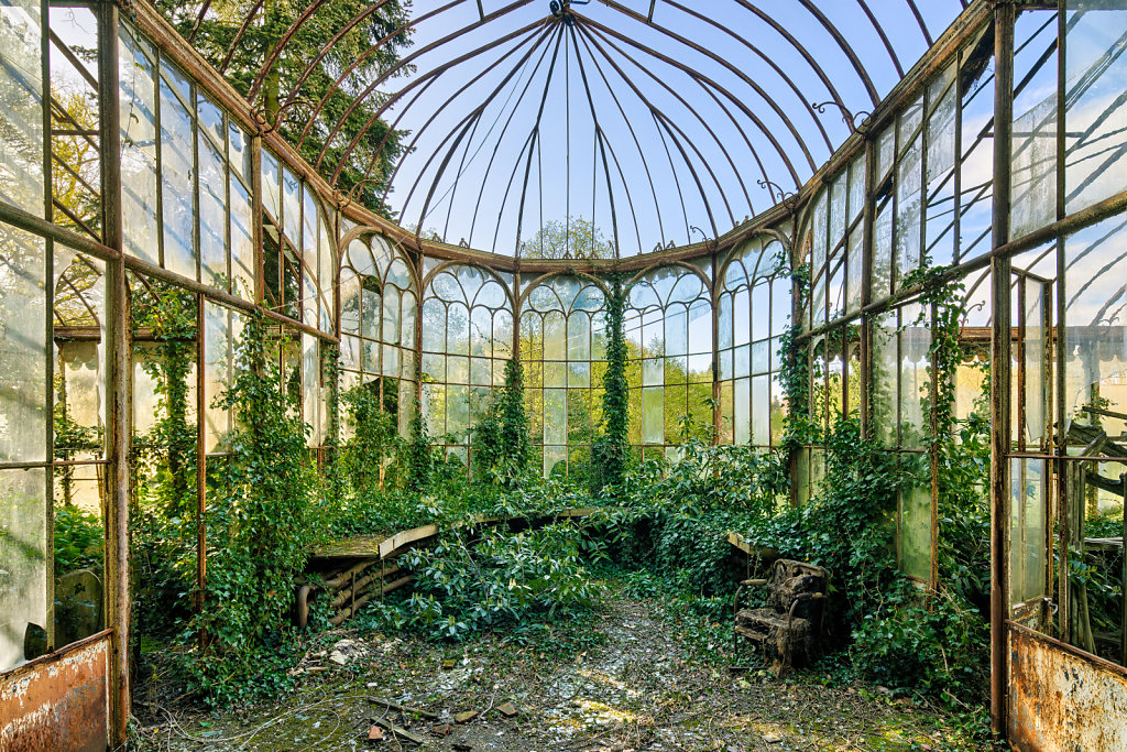 The Doctor's Greenhouse